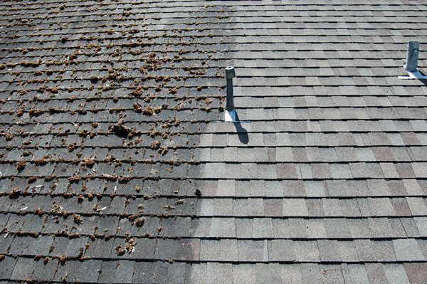 NH MA Roof Cleaning Experts