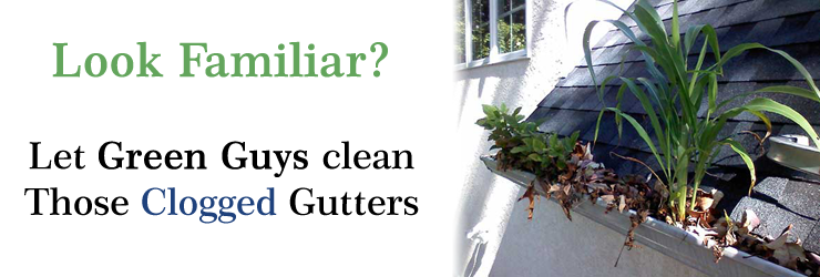 Gutter cleaning service NH, MA