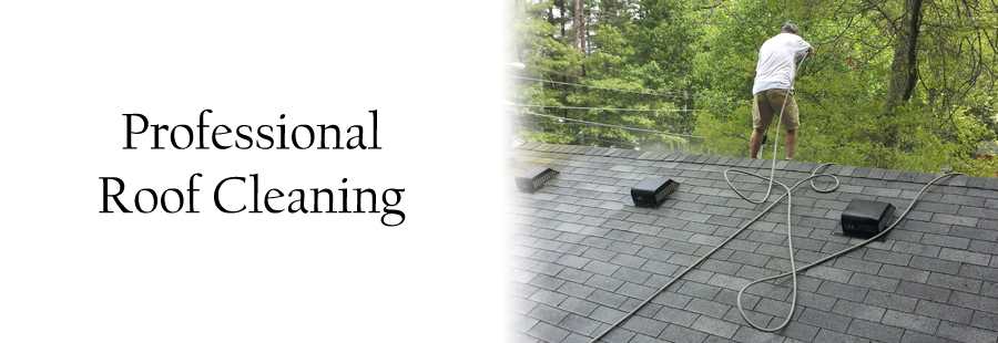 Roof cleaning company serving MA and NH