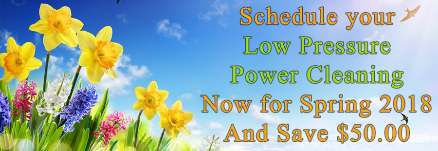 Save $50 on Spring Power Cleaning